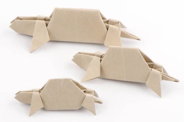 Cardboard sheets turtles image by Wasanajai (via Shutterstock).